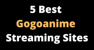 Top 5 Best Gogoanime Streaming Sites in 2021 To Watch Free